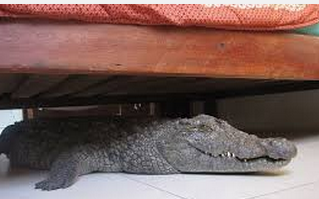 Sounds under the bed
